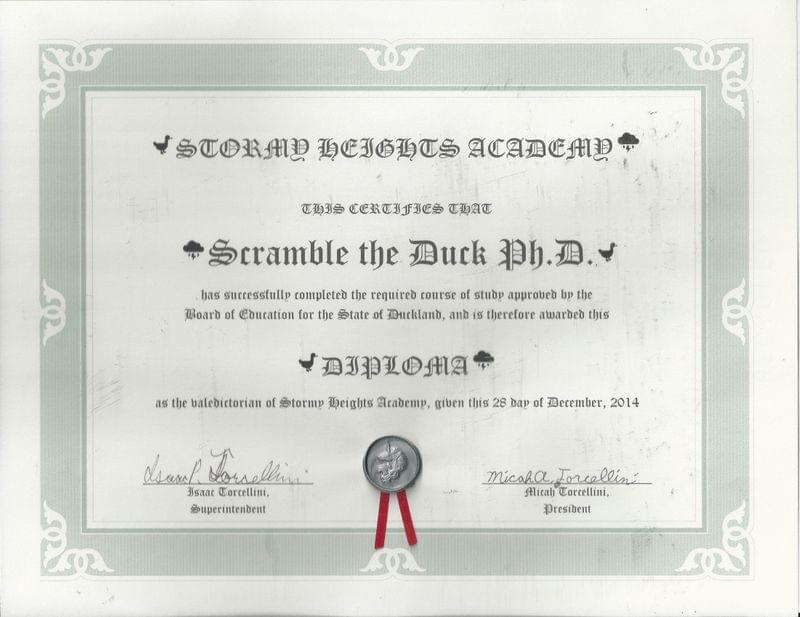 Scramble's diploma from Stormy Heights Academy
